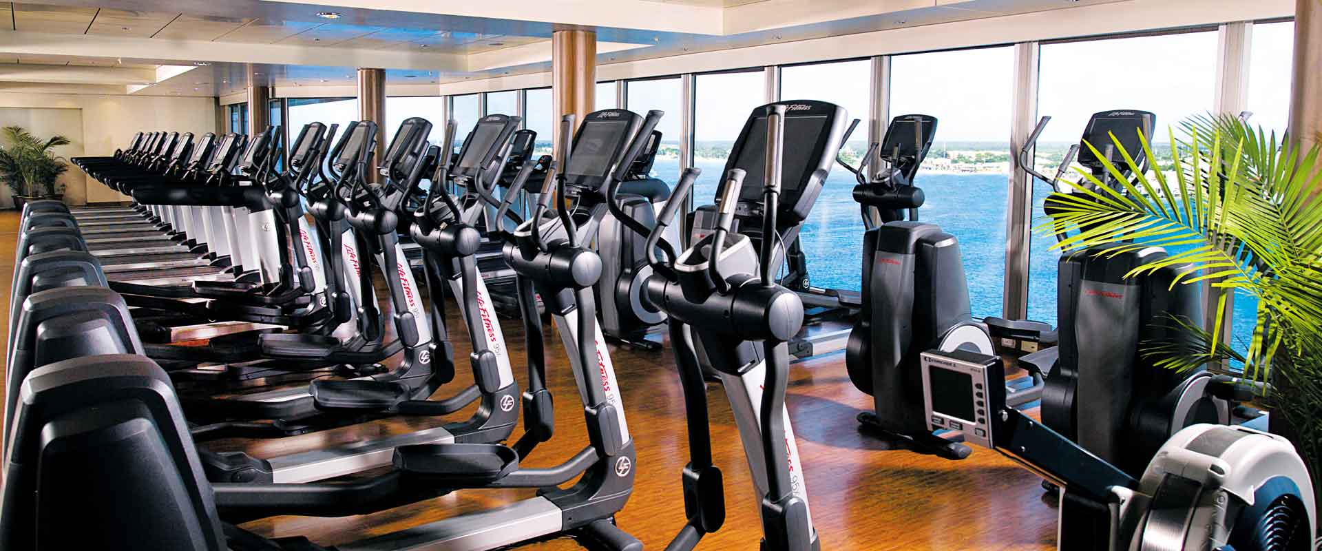 Gym and Fitness Equipment Leasing