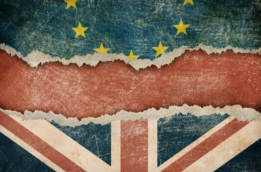 The Brits may have voted for Brexit but how will it continue to trade with the EU?